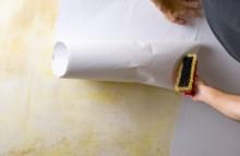 apprendre-papier-peint